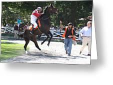 Saratoga Race Track Paddock Greeting Card