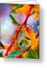 Saturated  Greeting Card