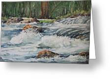 Sauble Falls Greeting Card