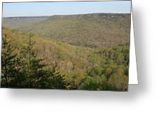 Savage Gulf Tennessee State Park IIi Greeting Card