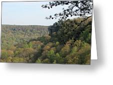 Savage Gulf Tennessee State Park Iv Greeting Card