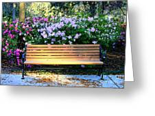 Savannah Bench Greeting Card by Carol Groenen