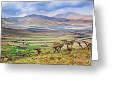 Savannah Landscape In Tanzania Greeting Card