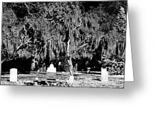Savannah Resting Place Greeting Card by John Rizzuto
