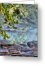 Savannah River In Spring Greeting Card