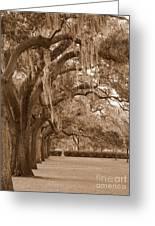 Savannah Sepia - Emmet Park Greeting Card