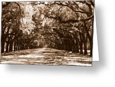 Savannah Sepia - The Old South Greeting Card