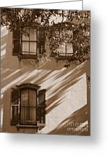 Savannah Sepia - Windows Greeting Card