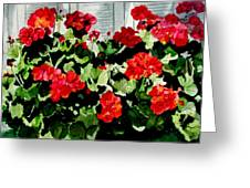 Savannah Window Box Greeting Card