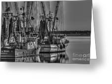 Save The Lowcountry Shrimping  Greeting Card