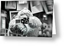 Say Abominable Greeting Card by Scott Wyatt