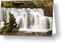 Scaleber Force Close Up Greeting Card