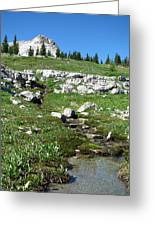 Scapegoat Amphitheater And Spring Greeting Card