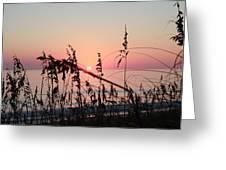 Scarlet Sunrise Greeting Card