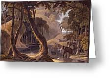 Scene In Sitsikamma - Elephants Greeting Card