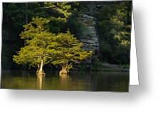Scenic Beavers Bend Greeting Card