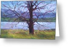Scenic Landscape Painting Through Tree - Spring Has Sprung - Color Fields - Original Fine Art Greeting Card