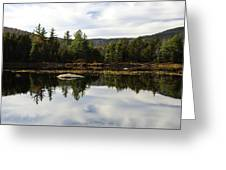 Scenic Lily Pond Greeting Card