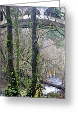 Scenic View Arch Bridge Greeting Card