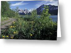 Scenic View In Autumn Of Eklutna Lake & Greeting Card