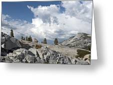Scenic View In Yosemite National Park Greeting Card