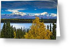 Scenic View Of Mt. Sanford L And Mt Greeting Card