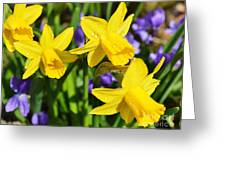 Scent Harmony Greeting Card