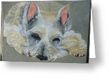 Schnauzer Pet Portrait Original Oil Painting 8x10 Inches Made To Order Greeting Card