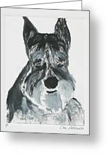 Schnauzing Around Greeting Card