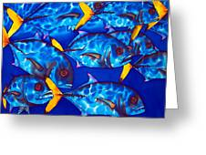 Schooling  Jack Fish Greeting Card
