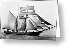 Schooner, 1888 Greeting Card