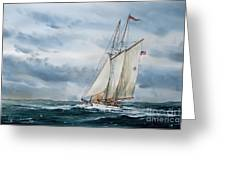 Schooner Adventuress Greeting Card