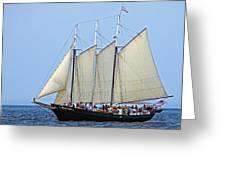 Schooner Alliance Greeting Card