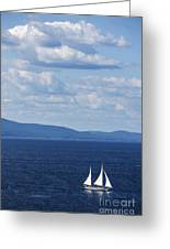 Schooner On The Bay Greeting Card by Diane Diederich