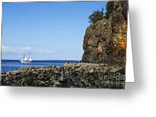 Schooner Sailing In The Bay Greeting Card by Diane Diederich