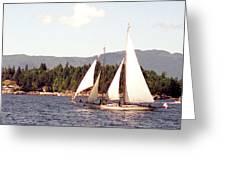 Schooner Under Sail Greeting Card