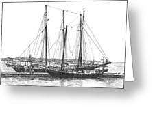 Schooners On The York River Greeting Card