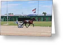 D3w-206 Scioto Downs Photo Greeting Card