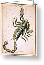 Scorpio Constellation  1825 Greeting Card