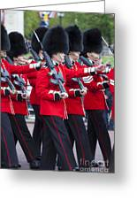 Scots Guards Greeting Card
