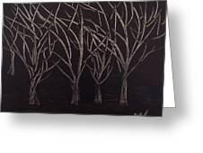 Scott's Trees Greeting Card