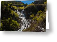 Scout Falls Greeting Card