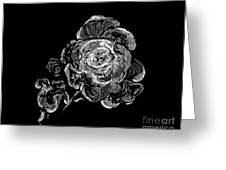 Scratched Rose Greeting Card