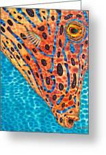 Scrawled File Fish Greeting Card