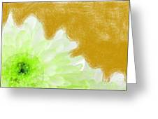 Scream And Shout Green White Brown Greeting Card