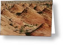 Sculpted Colorado Sandstone Paria Canyon Greeting Card