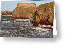 Sea And Rocks Greeting Card