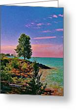 Sea And Tree Greeting Card