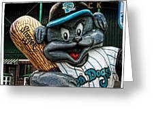 Sea Dogs Mascot Greeting Card