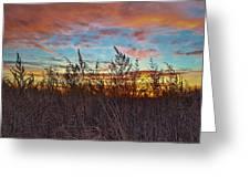 Sea Fields Greeting Card
